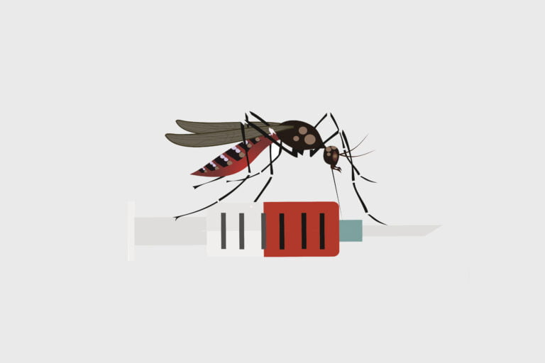 Dengue Virus. Dengue Vaccine.